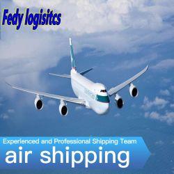 Морские грузовые перевозки воздушные транспортные логистическая компания в области транзитных аккумулятор/чувствительны к Мексике Amazon Manzanillo/Гвадалахара/Параисо /Кампече/El Salto, DDU DDP Express