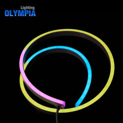 Vorrichtungs-kontinuierliche Länge flexibles Neon-LED Streifen-Licht RGB-