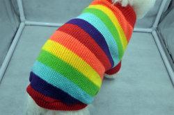 제조업체 맞춤형 겨울 처리 니트 스웨터 애완용품 애완견 용품 의류 (PCZW21023)