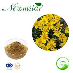 100% de natureza e a Saúde Novo Arnica montana Flower Extract para cuidados da pele e atividade antibacteriana, 10: 1