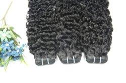 ممتاز 5A المنغولى الشعر المجعد بالجملة السعر فيرجن المنغولية الشعر