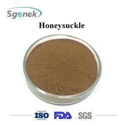 Extrait de plante CAS 84603-62-3 Honeysuckle Chèvrefeuille organiques purs de poudre d'extraire le chèvrefeuille en vrac