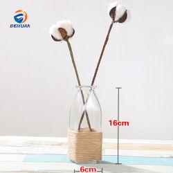 Квадратной формы дома оформление группы используйте новый стиль стиль элегантный стеклянный ваза со вкусом конопли веревки