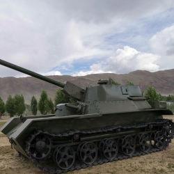 Nieuwe het Aankomst Gegoten Model1:1 van de ModelTank van de Tank voor Vertoning