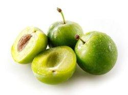 Venta caliente alimentación directamente de fábrica 100% natural en polvo extracto de ciruela verde