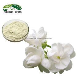 100% naturel extrait de plante fleurs de jasmin fraîches extrait de poudre