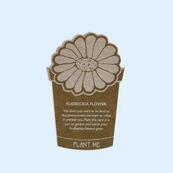 Graines de semence promotionnel de cartes papier Carte de nom de papier