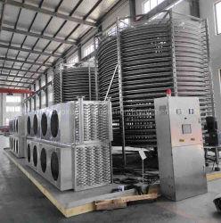 높은 Quality 및 Efficiency Industrial IQF Spiral Freezer IQF