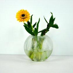 Transparenter Glasvase/Wasserpflanze-Vase/Wasserkulturglasvase