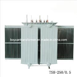 Régulateur de tension magnétique série (TDH2, TSH, TDGH, TSGH) (TSH-250/0.5)
