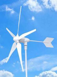 Impianto generatore a vento da 300 W 600 W 1 kw 2 kw