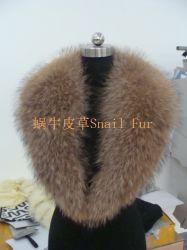 De reusachtige Kraag van het Bont van de Wasbeer bij de Hond van de Wasbeer van Tangshan van de Kleur van de Aard (11)