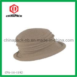 Winter-Wolle-Freizeit-Hut für Damen (CPA-14-1182)