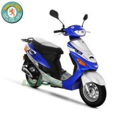 밝은 새로운 디자인된 최신 판매 50cc 모터바이크 소형 T 스쿠터 먼지 자전거 (유로 4)