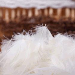 Bluk no huele de plumas de pato relleno Cojín de sofá de plumas de pato