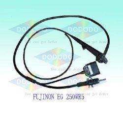 Riparare l'endoscopio flessibile (RIPARAZIONE FUJINON PER ESEMPIO. - 250WR5)