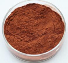 Het Uittreksel Portlandcement 95% Polyphenols 45-90% van het Zaad van de druif