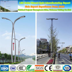 セリウム、RoHS、FCCはIP67 30W販売のための太陽LEDの街灯を承認した