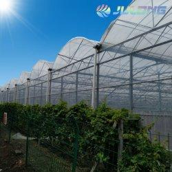 هيكل الصلب بناء الدفيئة للزراعة