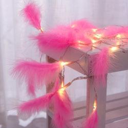 Indicatore luminoso a pile della stringa della piuma LED della decorazione di natale