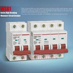 De miniatuur Gevormde AC van de Lucht van het Geval Brekende MiniatuurStroomonderbreker van de Schakelaar van de Capaciteit 6ka 10ka Vacuüm Elektro (WSB1) MCB