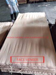 Matériaux de construction matériau de sol en bois de placage placage MDF pour le contreplaqué