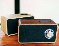 Plusdot en bois Haut-parleurs portables sans fil Bluetooth avec câble auxiliaire TF carte de mémoire