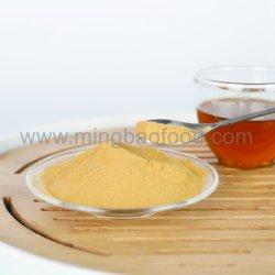 Extrait de thé vert instantanée avec les certificats halal et casher