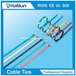 Acier inoxydable à revêtement époxy attache de câble de verrouillage à billes avec des clips