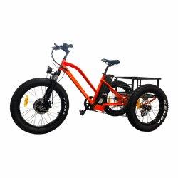 Preço barato 48V 500W Pneu Gordura Ebike Adulto Roda 3 bicicleta eléctrica Aluguer da China Mz-376