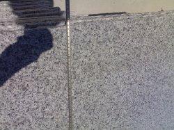أسود صيني من البازلت يتلون على الأرضية الجرانيت G684