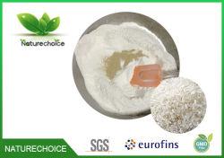 米小麦粉/Powderの米の粉の食糧補足