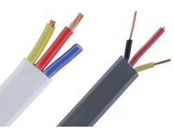 Dubbele en geaarde platte elektrische PVC-isolatiedraad met BS Standaard 6004 2 X 2.5 + 1 X 1,5 mm2