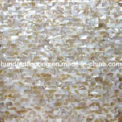 Shell mosaïque de nacre (PGH62)