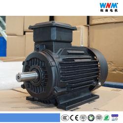 Wnm Ce et de la CCC / double vitesse totalement fermé trois vitesse / quatre pôles de vitesse de la modification de l'AC 3 phase moteur électrique de la courroie du ventilateur de la pompe Conveyour