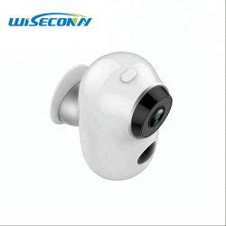 De Mini Digitale Camera van kabeltelevisie met Waterdicht en Video