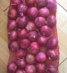 Una cipolla rossa fresca dei 2020 raccolti sulla vendita