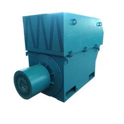 موتور تيار متردد ثلاثي الأطوار من دوار المركبة على الأرض متوسط الحجم عالي الجهد