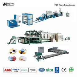 Plaque de Mousse de projets clés en main le déjeuner Ligne de production (TM105/120)