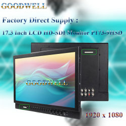 """Peaking Focus Assist LCD 17,3"""""""