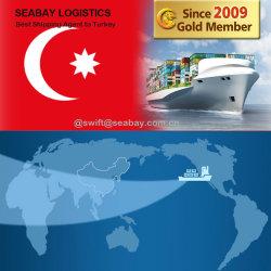 Preiswerte schnelle Seefracht von China zur Türkei/zu Istanbul/zu Ismir/zu Mersin