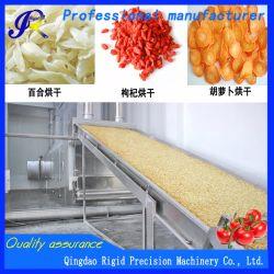 Ajo patata/// Chile maquinaria Secador Correa alimentos vegetales de la máquina de secado de frutas