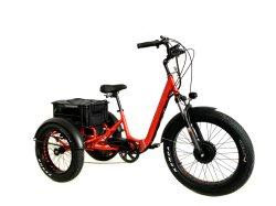 Panier de l'objet Three-Wheeled arrière véhicule électrique