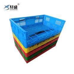 De PP coloridos dobra material à base de Frutas e Produtos Hortícolas Armazenamento Quadrados Cesto de empilhamento com orifícios