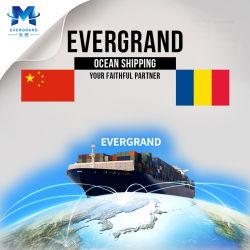 Профессиональные службы доставки морские перевозки из Китая в Румынии/Констанца