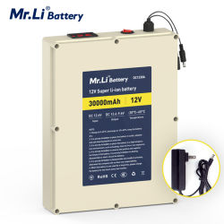 5A 충전기를 가진 Li Rechargeable LED Battery 12V 30A 씨 리튬 이온 사진기 책임 건전지 18650 건전지 팩 보호 널