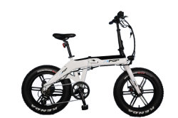 20 batteria nascosta motore piegante elettrica della bici 48V 750W del pneumatico grasso di pollice