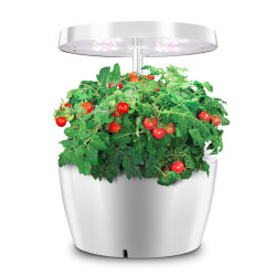 Smart à l'intérieur de la culture hydroponique Herb Garden cuisine pour les légumes du semoir