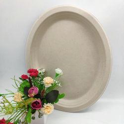 Cena naturales biodegradables de vajilla desechable gran placa oval