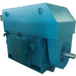 AC van de Inductie van de Rem van Yej Elektromagnetische Motor In drie stadia